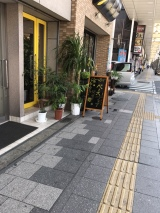 Downtown Iwakuni